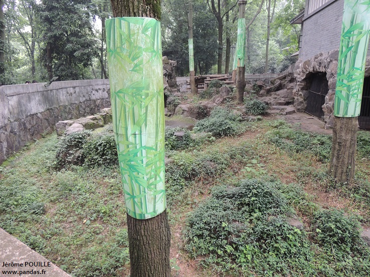 Zoo de hangzhou 2013 for Zoo exterieur