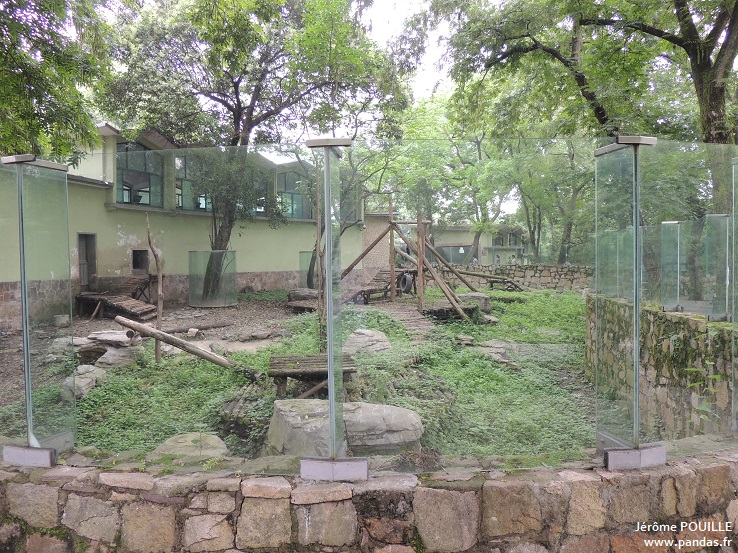Zoo de shanghai 2013 for Zoo exterieur